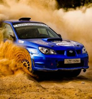 preview_Rally