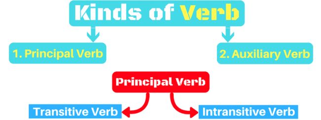 Kinds/types of Verb