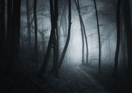 Word of the day-Tenebrous