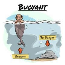 Word of the day-Buoyant