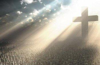 Perdi a fé na fé que eu tinha!