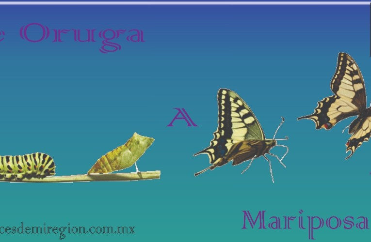 "Programas ""De Oruga a Mariposa"" con La Zapata"