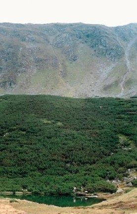 Iezarul Bitritei muntii rodnei romania natura