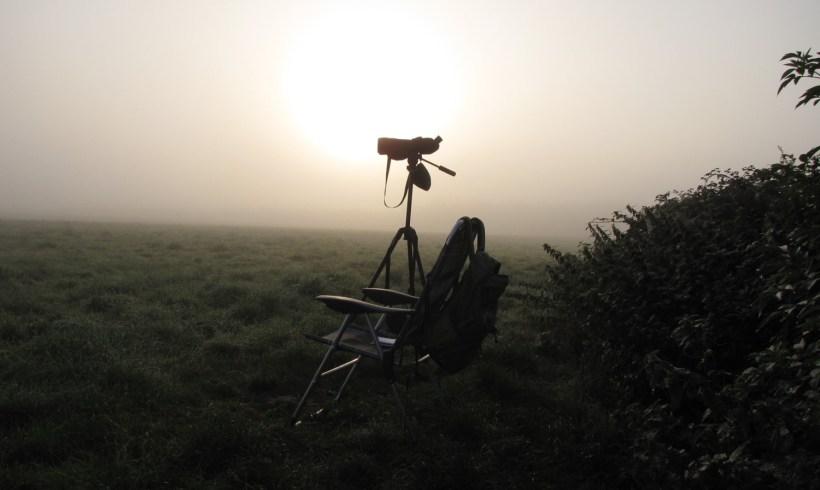 Trekvogels tellen in Oetersloven 1998-2018