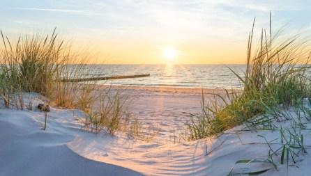 100】Frasi Belle sul Mare ▷ Aforismi e Citazioni sul Mare