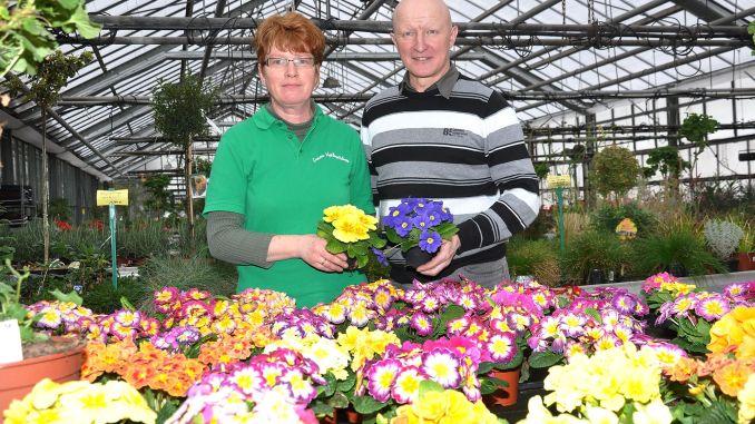 Greizer Vogtlandblumen GmbH präsentiert den Frühling
