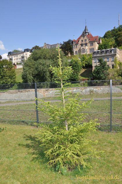 Greizer Neustadtverein setzt weiteres wichtiges Signal