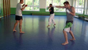 Gold und Silber für Greizer Karatekämpfer