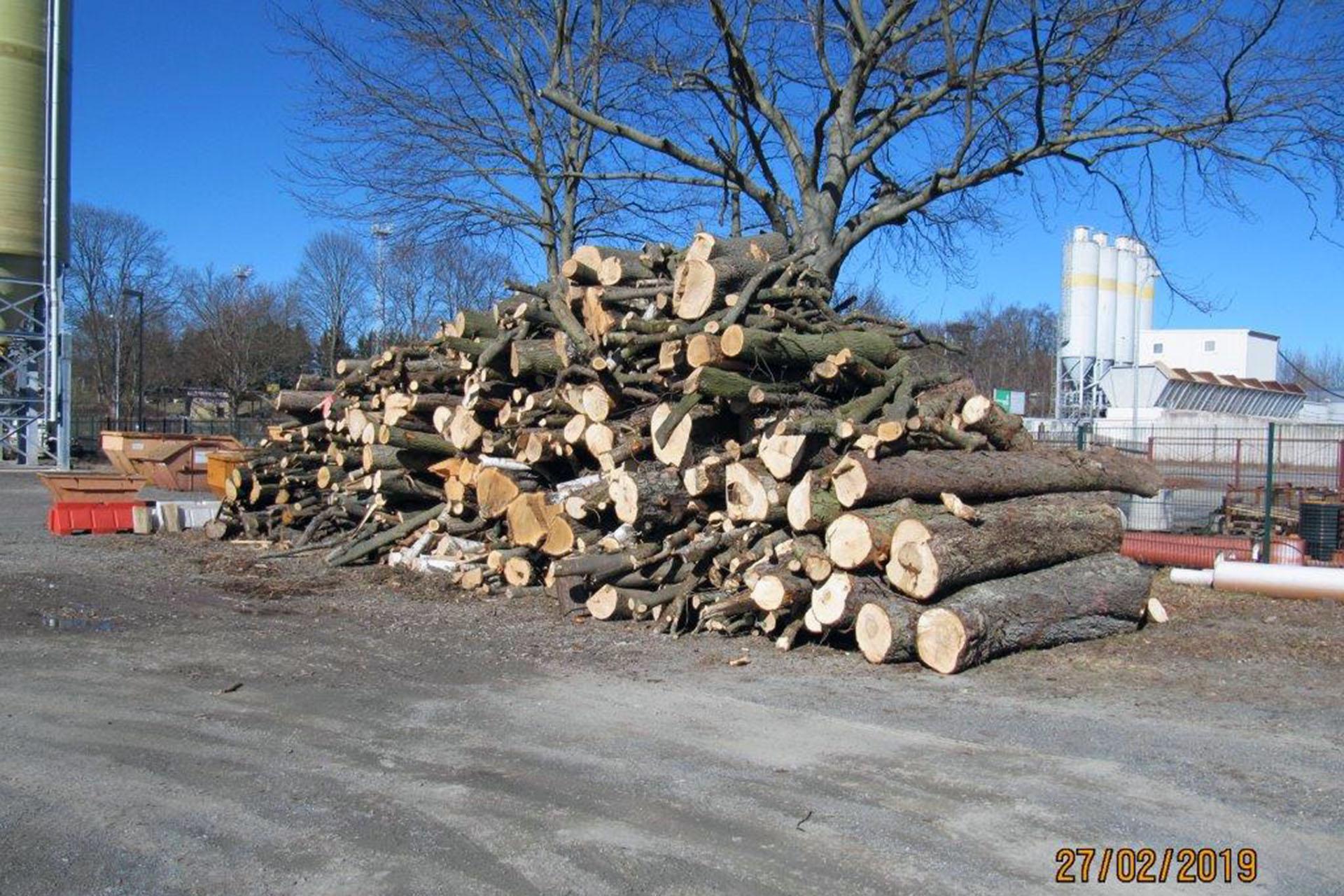Das Landratsamt Greiz informiert: Verkauf von Brennholz