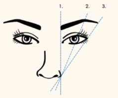 eyebrow shape guide