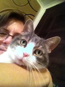 Close up of Sugar's face, grey with white markings, peeking over my arm as I hold her and take a selfie of us