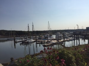 dozens of sailboats gathered in a beautiful harbour