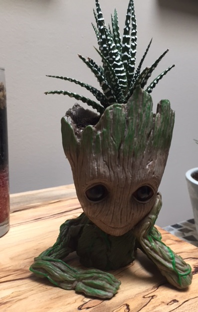baby groot planter with cactus planted in it, looking like a sprout of hair coming out of his head