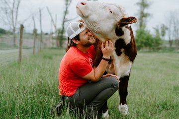 Dan, a 30-something man wearing jeans and a red T shirt, crouches under Mike, a brown and white cow, as he scratches under Mike's chin