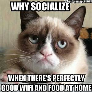 Grumpy Cat meme features a photo of Grumpy Cat and the words: Why socialize when there's perfectly good wifi and food at home.