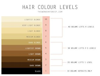 hair colour chart from 1 black to 10 palest blonde