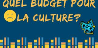 budget culture cameroun