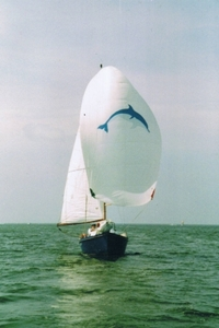 Dolfijn, devenu volja