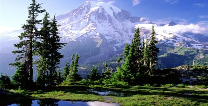 Will picturesque Mount Rainier stand the exactitude of the new Decade Volcano Program? Photograph borrowed from Cabin Rentals Ashford.