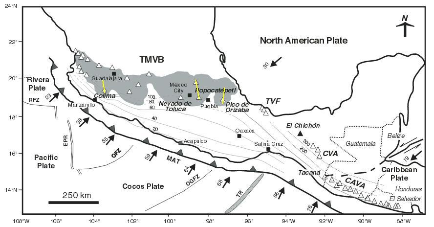 The geological setting of the Trans Mexico Volcanic Belt. The numbers next to the arrows showing the direction are the annual subduction rates. The numbers along the isolines display the depth of the subducting plate as inferred from earthquakes. The TVMB is outlined in grey and the alignment of volcanoes mentioned are in yellow. Note how volcanoes (north-)west and (south-)east of the TMVB seem to align along the 300 and 100 km subduction isolines as opposed to transversing them as is the case in the TMVB. (Adapted from Macías 2007)