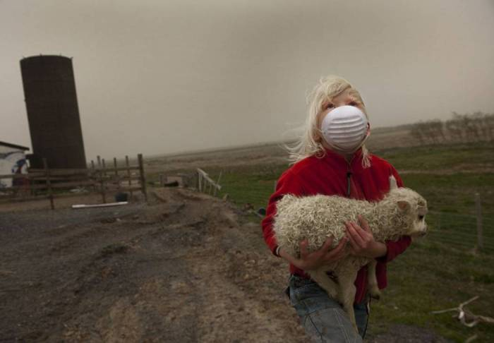 Photographer unknown, rights belonging to photographer – A child carrying a baby-lamb, Grimsvötn eruption 2011.