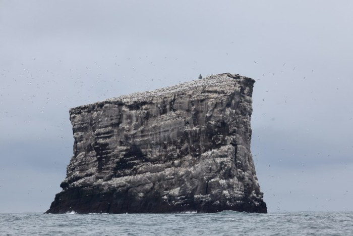 The remnant pluton that forms the Eldey island. Wikimedia Commons, photograph by Dagur Brynjólfsson.