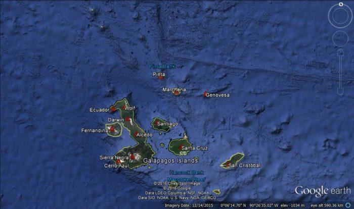 Galapagos 1 Rene Goad