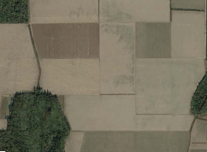 An ancient sand blow vaguely visible in a plowed field near New Madrid