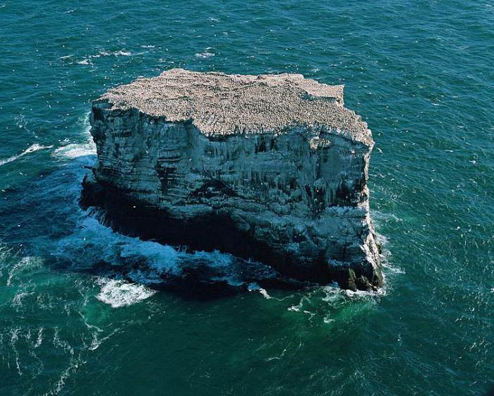 he Gannet riddled island of Eldey.