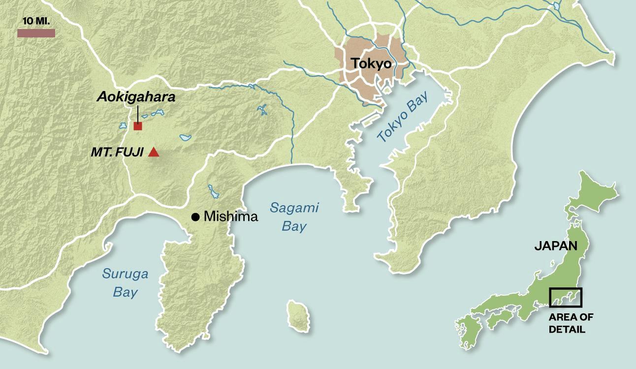 Images Of Mount Fuji Volcanocafe