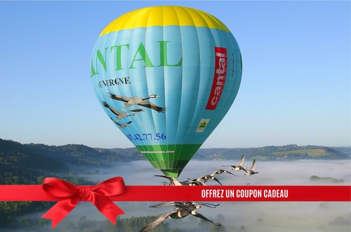 Bon Cadeau Montgolfière avec les oiseaux Cantal