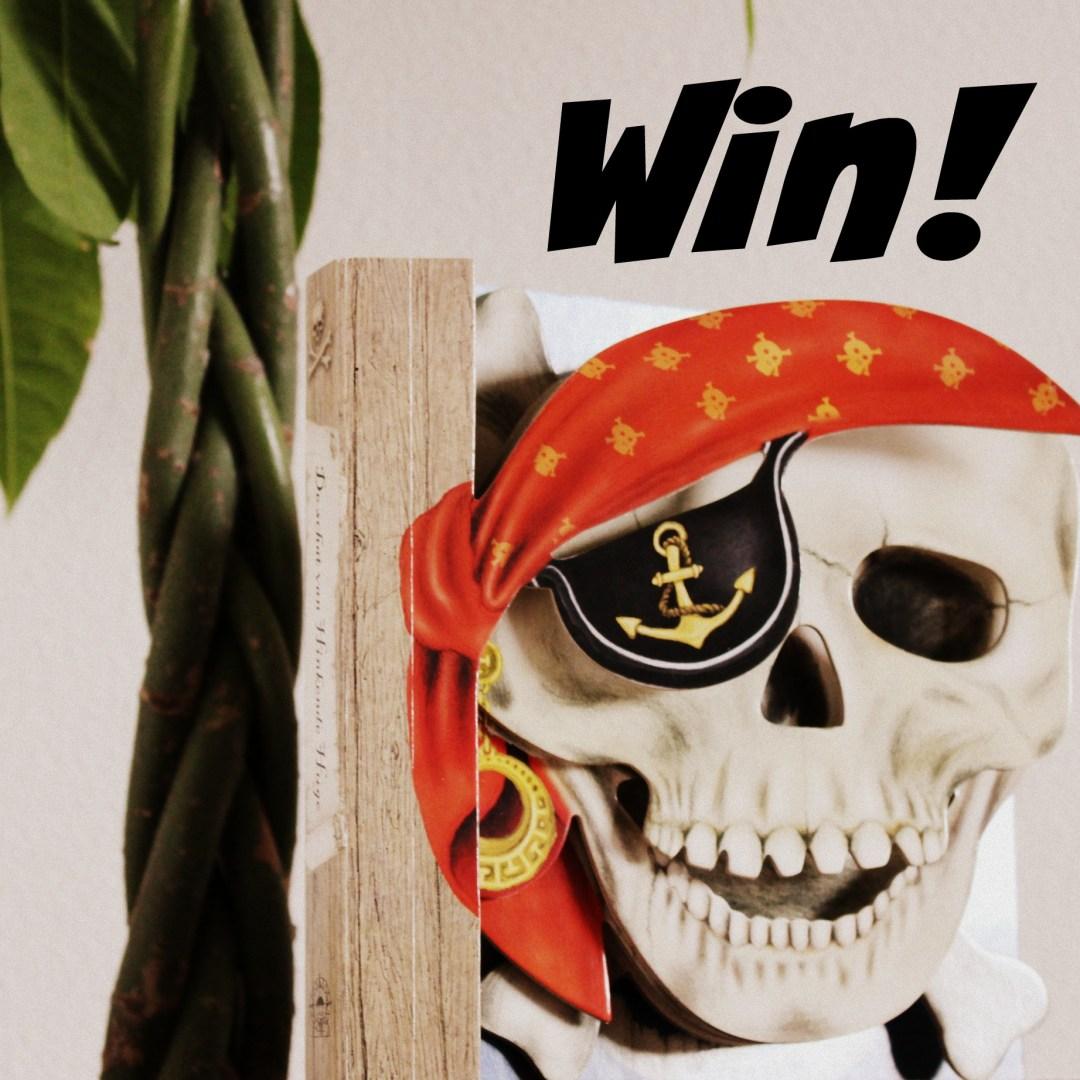 piraat4
