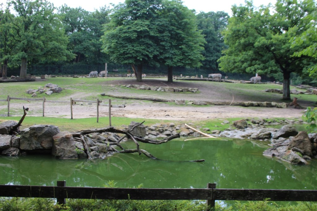 allwetterzoo-munster
