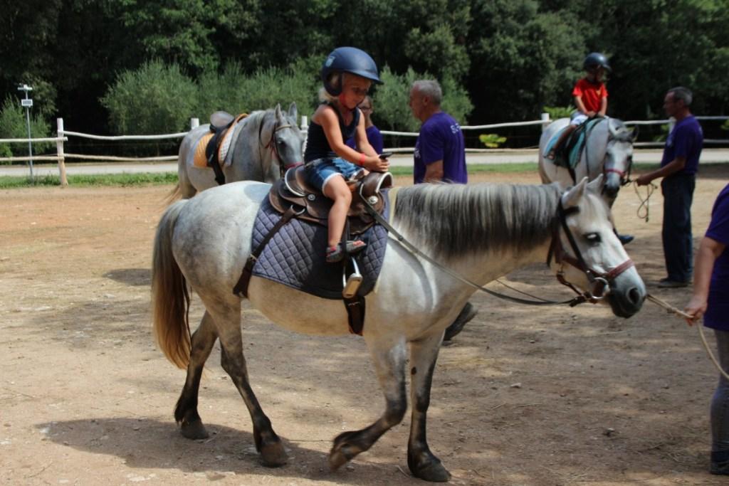 horsecentar-lanterna