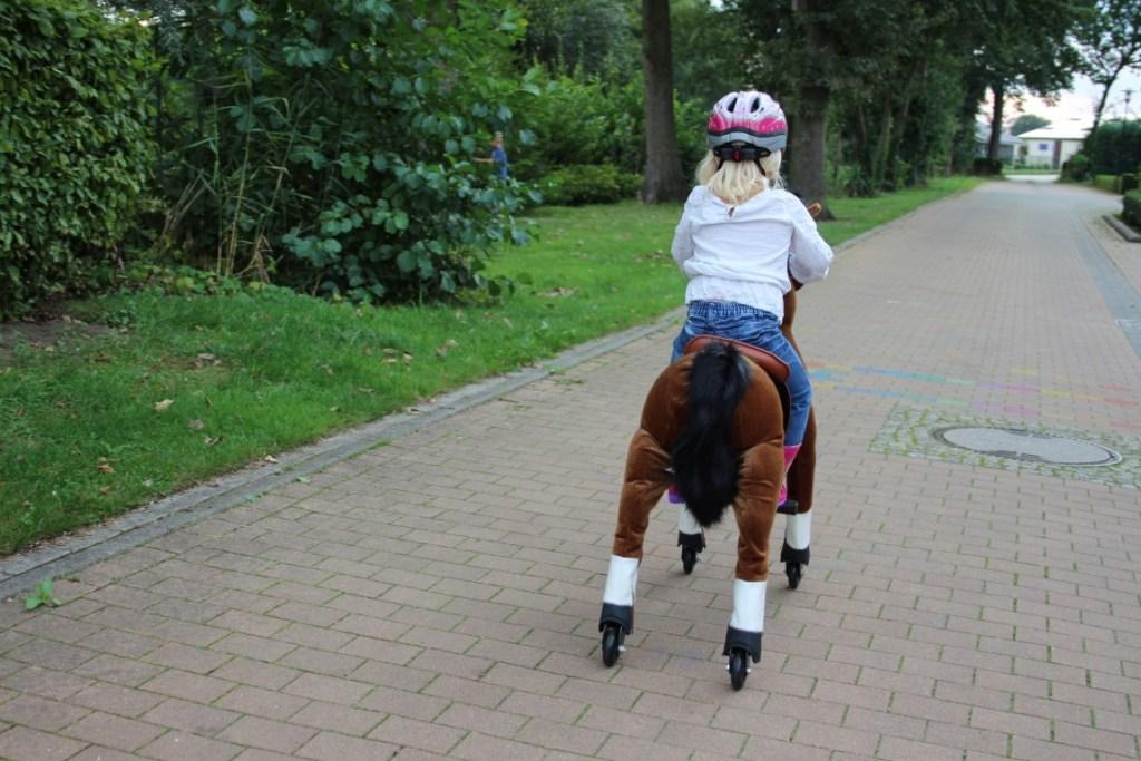 animal-riding-horse-paard
