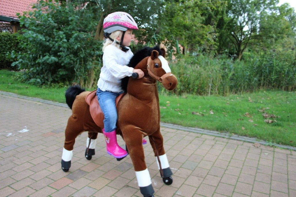 animal-riding-paard-horse-kids-review