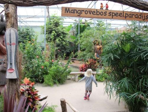 mangrovebos-speelparadijs