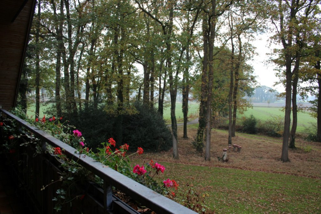 nordhorn-vakantieboerderij-duitsland-boerrigterhof