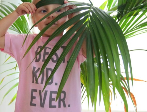 gocustomized-shirt-ontwerpen