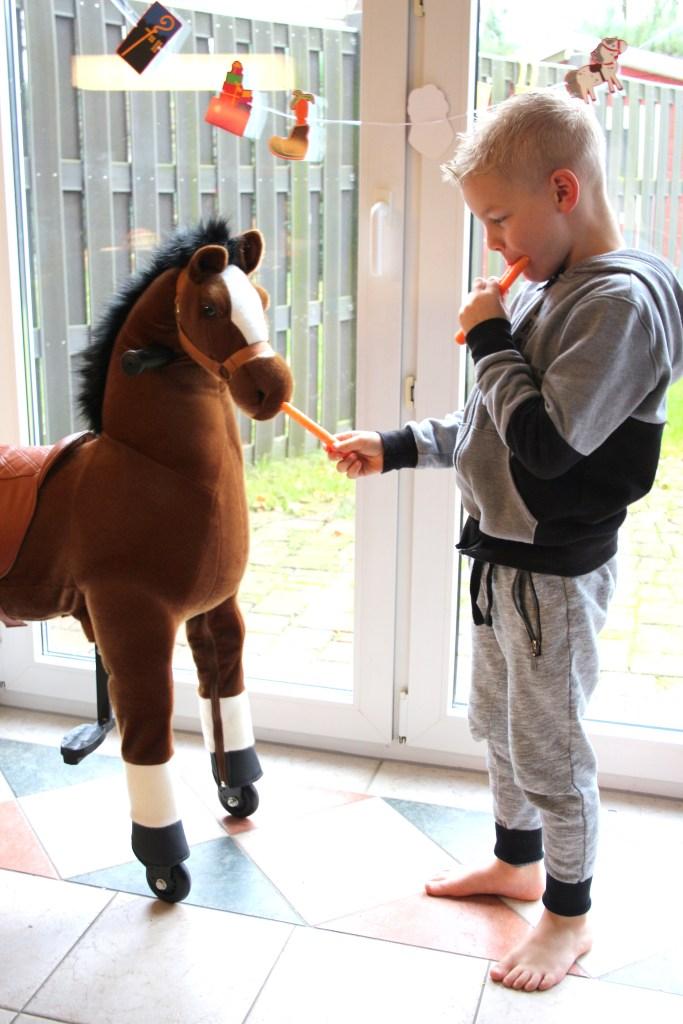 animal-riding-review-ervaring-winactie