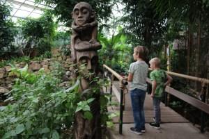 tropical-zoo-berkenhof-zeeland-met-kinderen