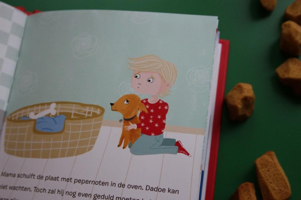 Recensie Sinterklaasboek Dadoe Pakjesavond - Jim Bakkum