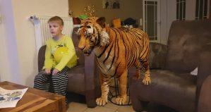 Google 3D animals - Welke dieren komen tot leven