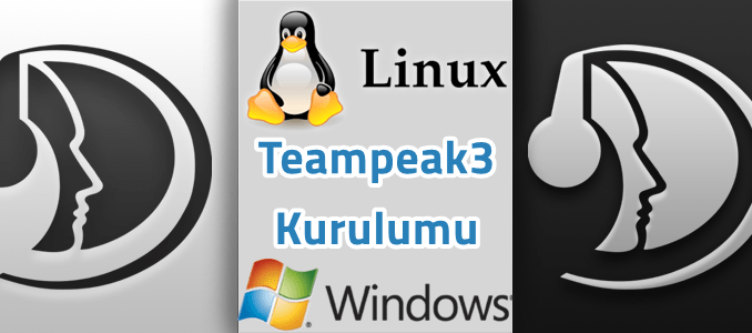 teamspeak 3 server cracked linux