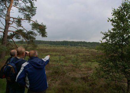 Naturschutzgebiet Heilsmoor