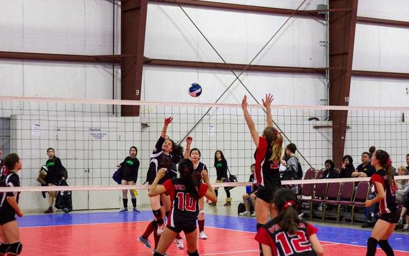 13U Girls Club Volleyball