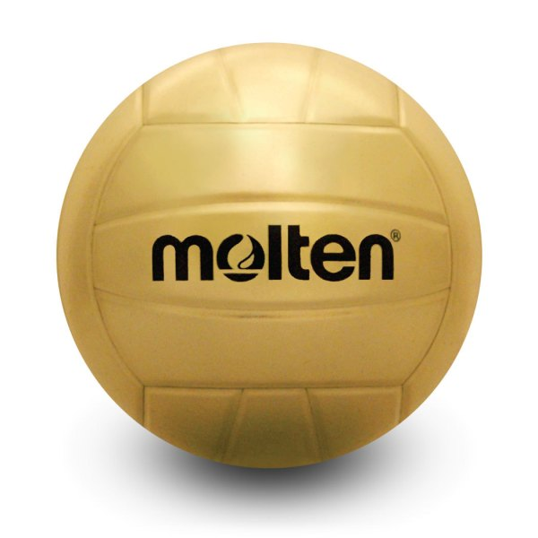 Molten Gold Trophy Autograph Volleyball