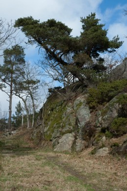 wp--20140323_Vollmers_2133