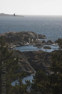 wp--20140323_Vollmers_2156