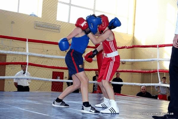 130 боксерів змагалися у Володимирі в суботу